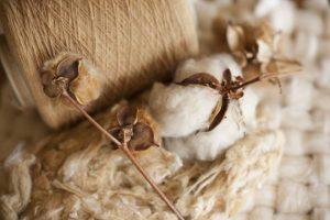 Các loại vải cotton phổ biến nhất hiện nay